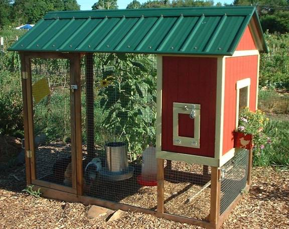 The perfect chicken coop root simple for Basic chicken coop