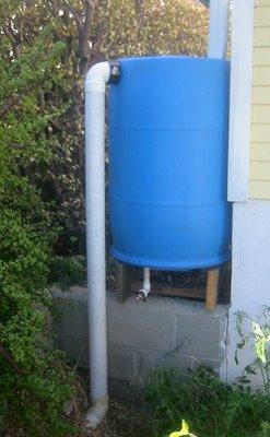 Make A Rain Barrel Root Simple