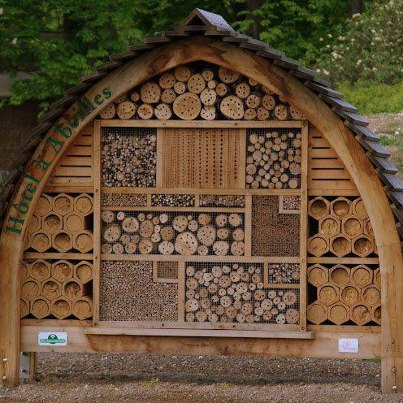 Picture sundays a native bee hotel root simple for Native house plan