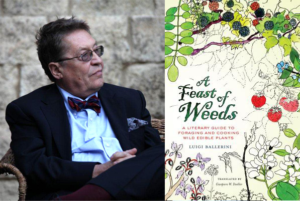 A Feast of Weeds by Luigi Ballerini