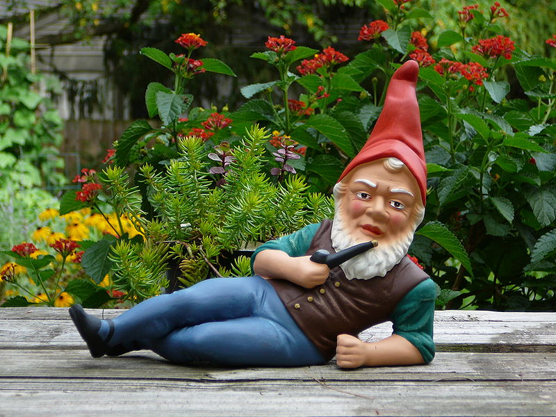 800px-German_garden_gnome