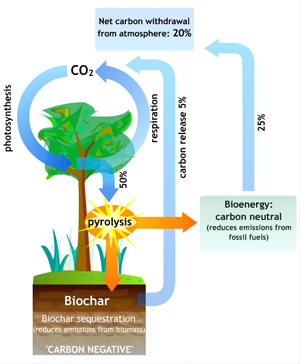 Biochar-and-Pyrolysis_1
