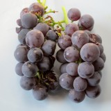 Pearl River Grape