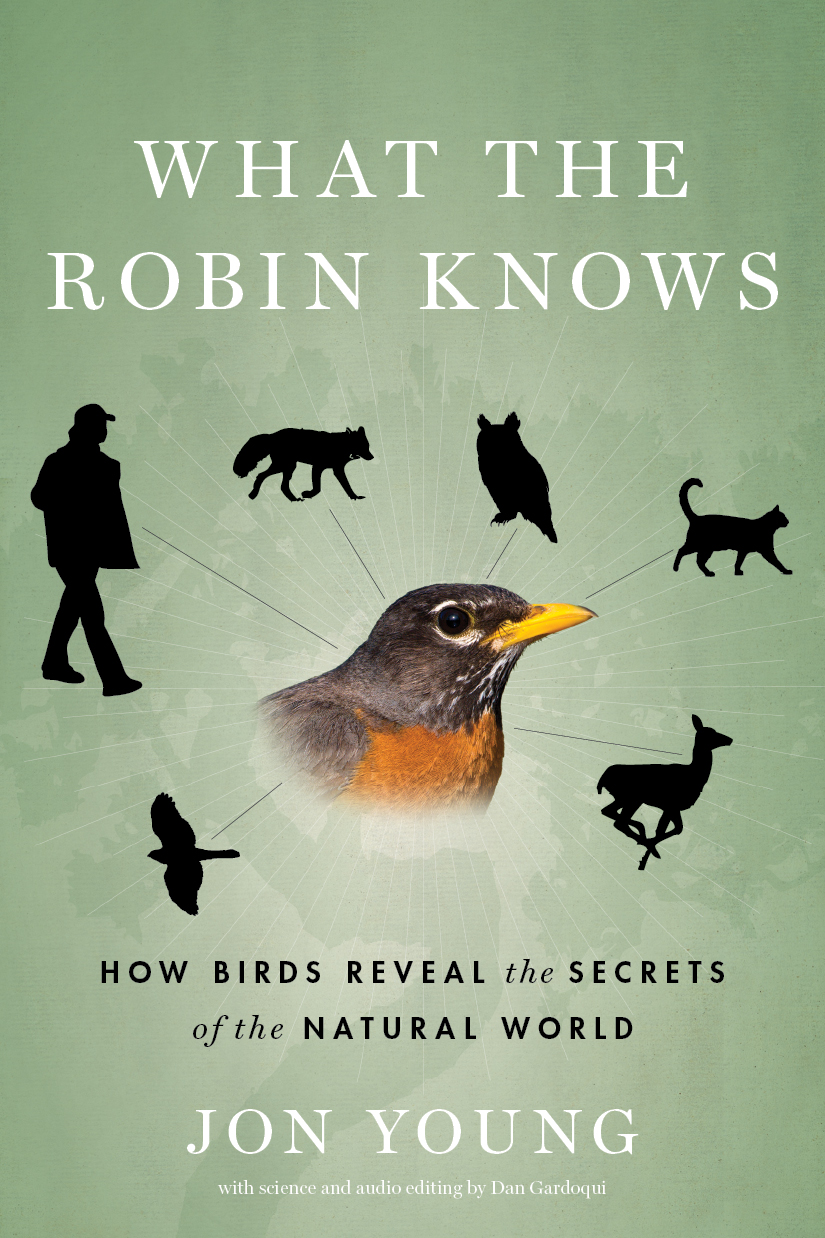 What The Heck Am I Doing The First Month Blogging: Book Review: What The Robin Knows