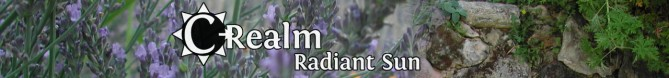 C-Realm_WordPress_banner2