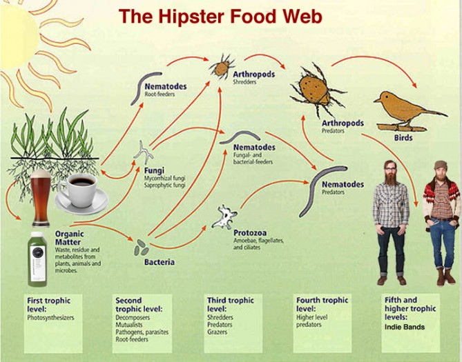 An updated, urban version of the soil food web.