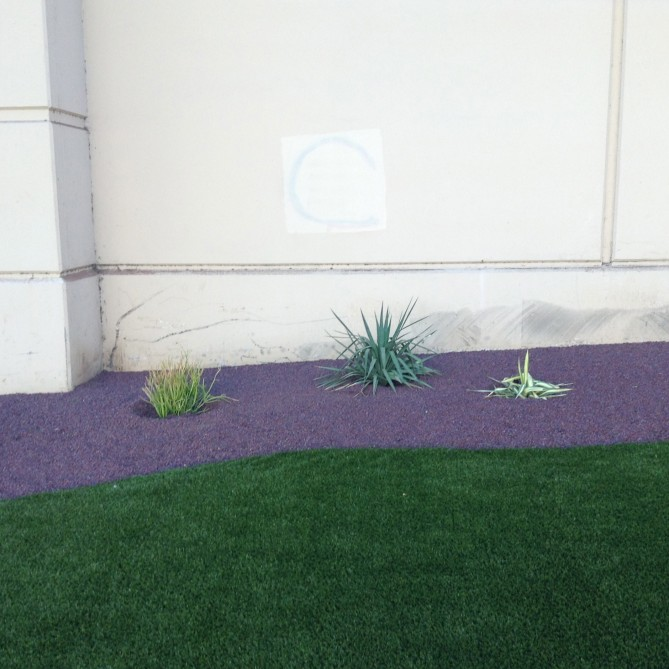 dwp landscaping