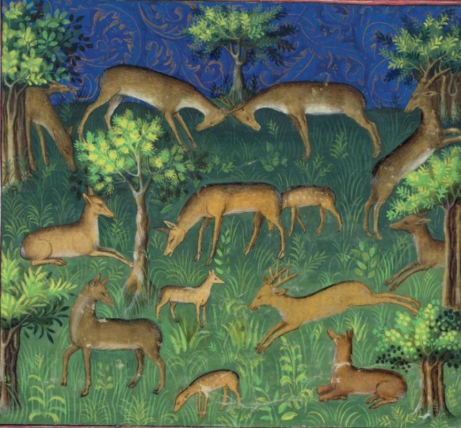 medieval image of deer