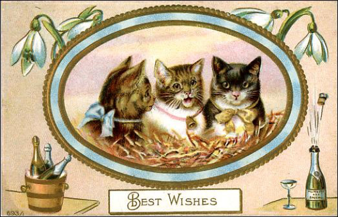 vintage-happy-new-year-cards-three-cats-champagne