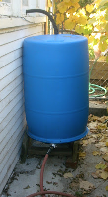 With ... & Using Greywater from your Washing Machine | Root Simple