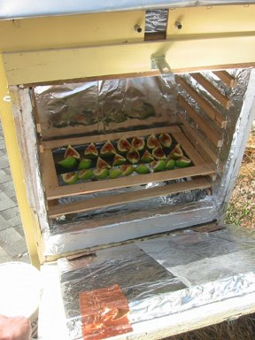 Build A Solar Dehydrator Root Simple