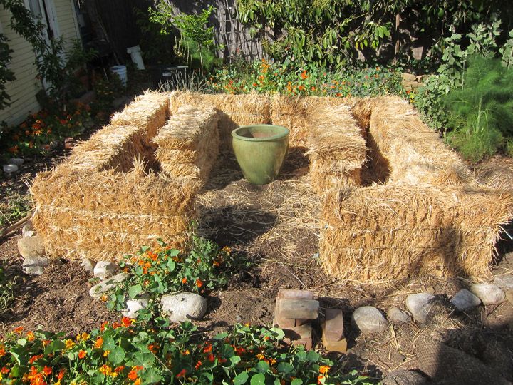 Raised Bed Gardening With Hay Bales Garden Ftempo