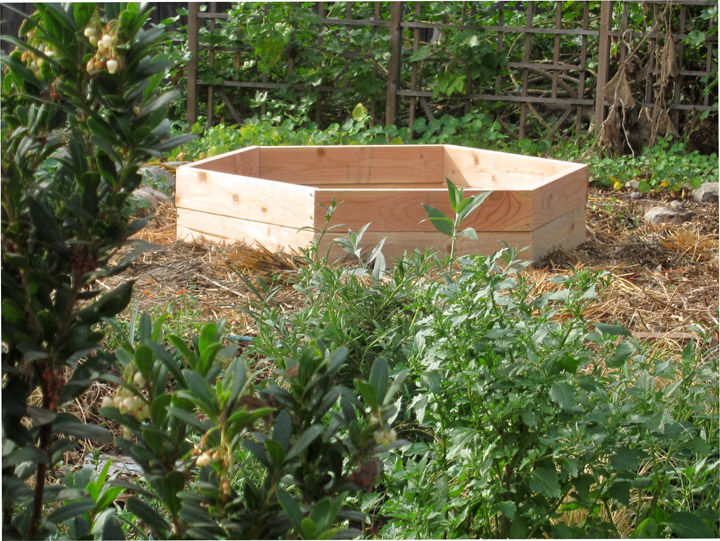 Hexagonal Raised Vegetable Beds: SketchUp Saves the Day ...