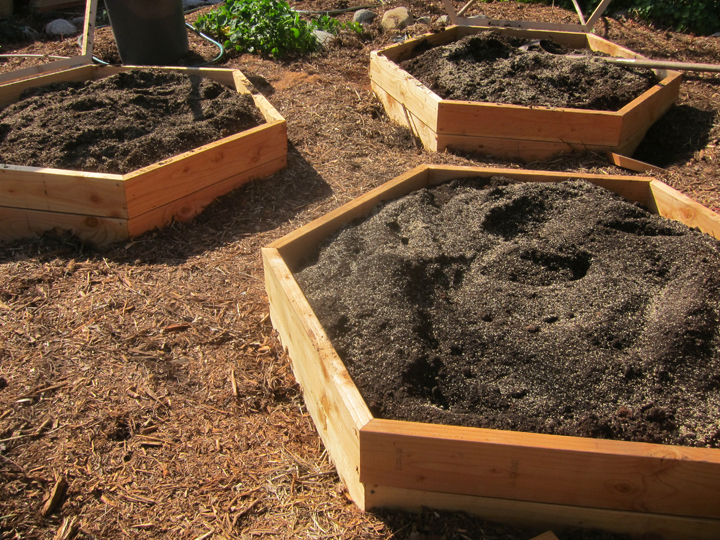 Raised Beds Soil Preparation