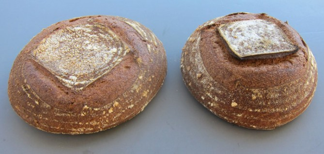 sonora wheat loaf and joachin oro wheat loaf