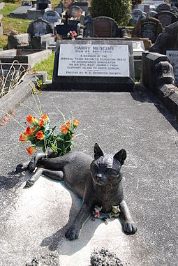 Harry_McNeish_Gravestone_cat